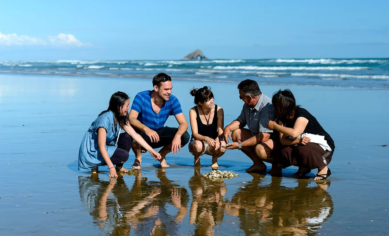 New Zealand Northland Explorer Experience 6