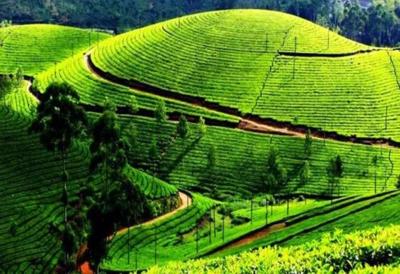 Enchanting Kerala Tour 1