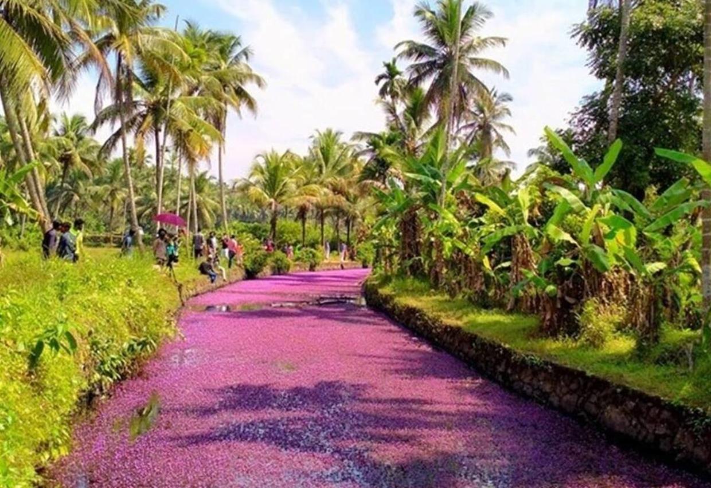 Enchanting Kerala Tour 3
