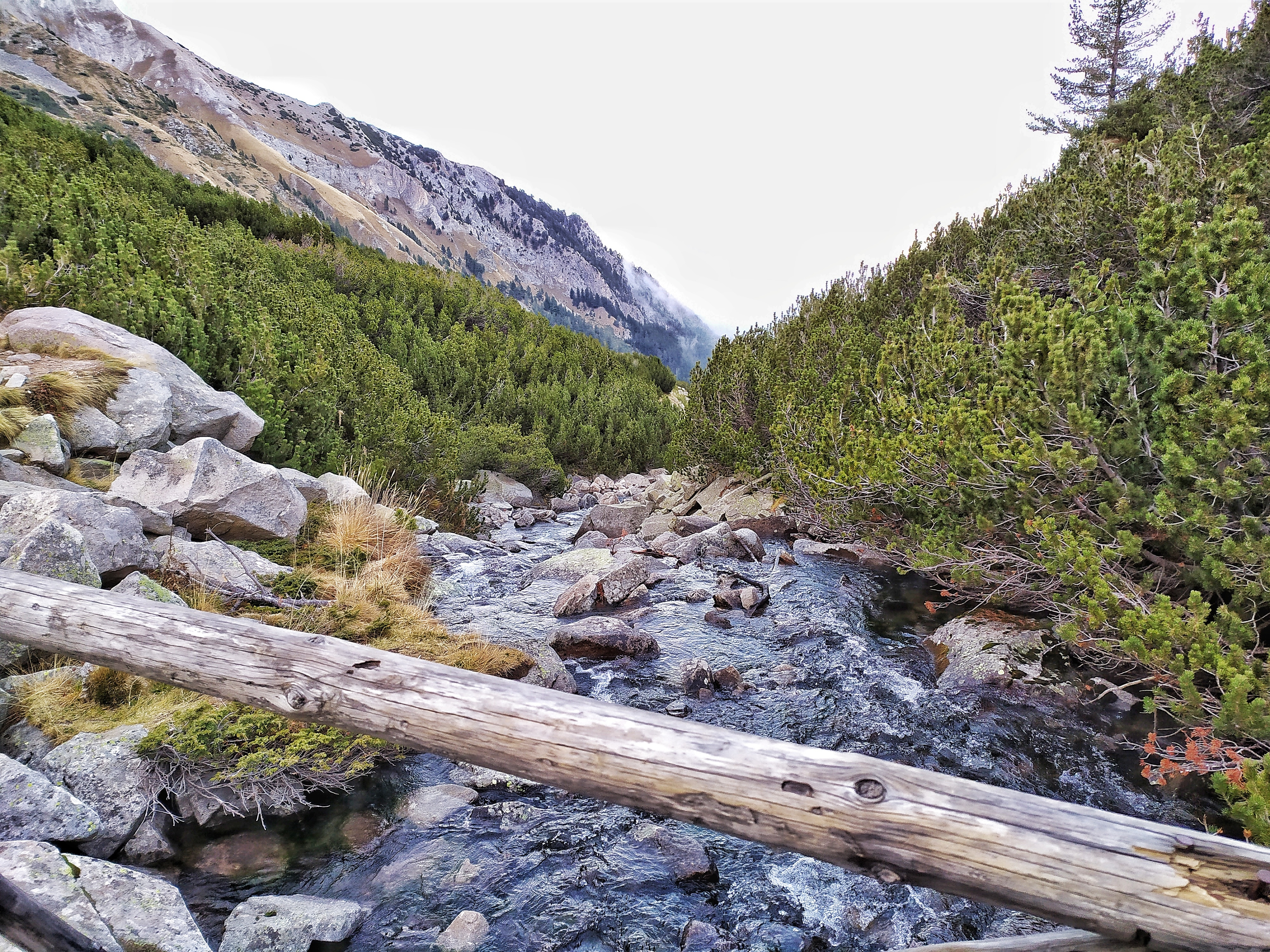Hiking in Pirin UNESCO Natural Park & Visit To Bansko 5