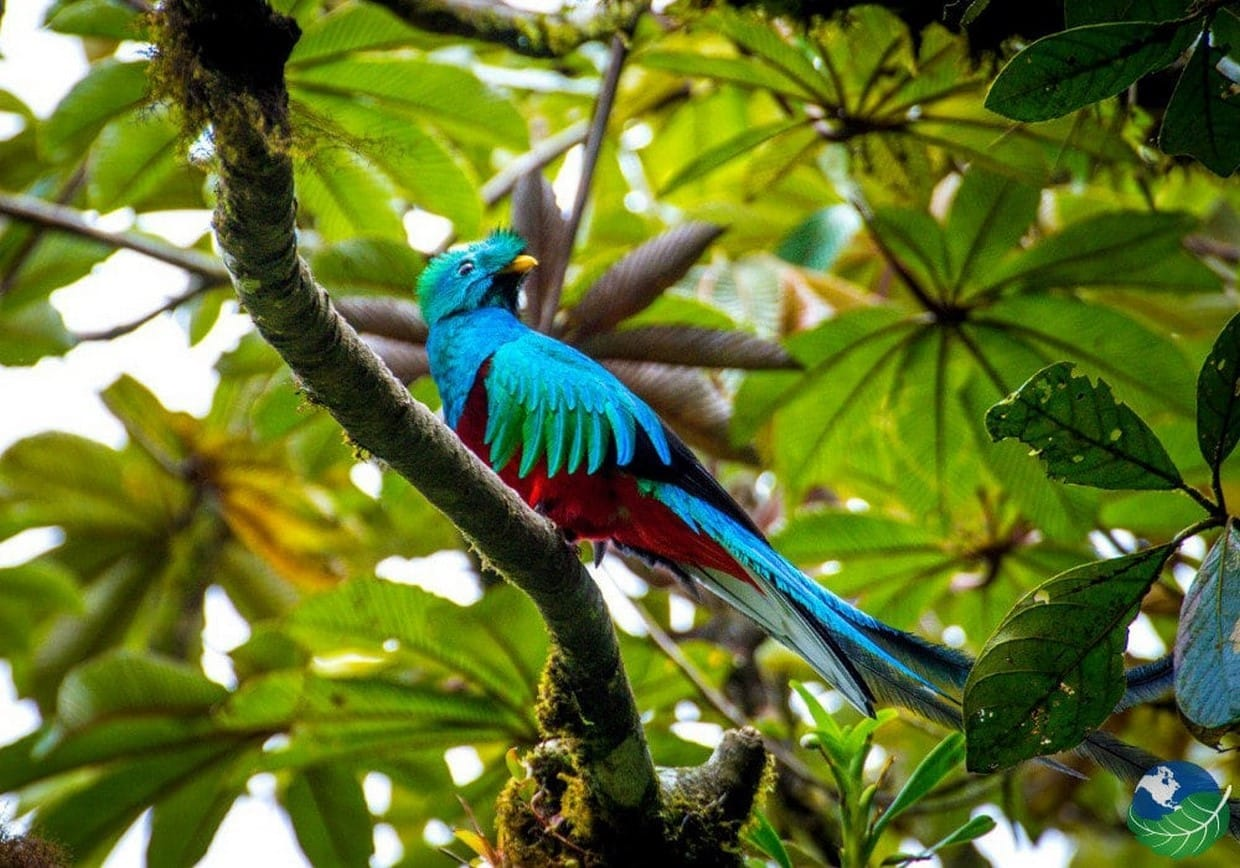 Best Spots of Costa Rica 7