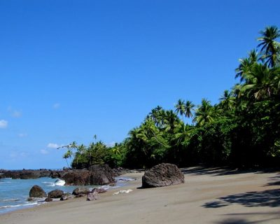 Costa Rica Travel Guide For 2021 3