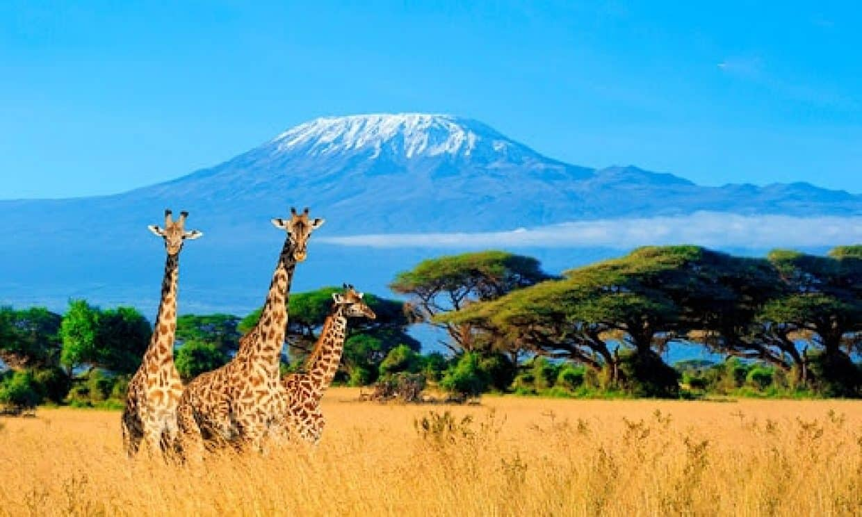 7 Days Amboseli, Hells Gate and Maasai Mara Adventure 1