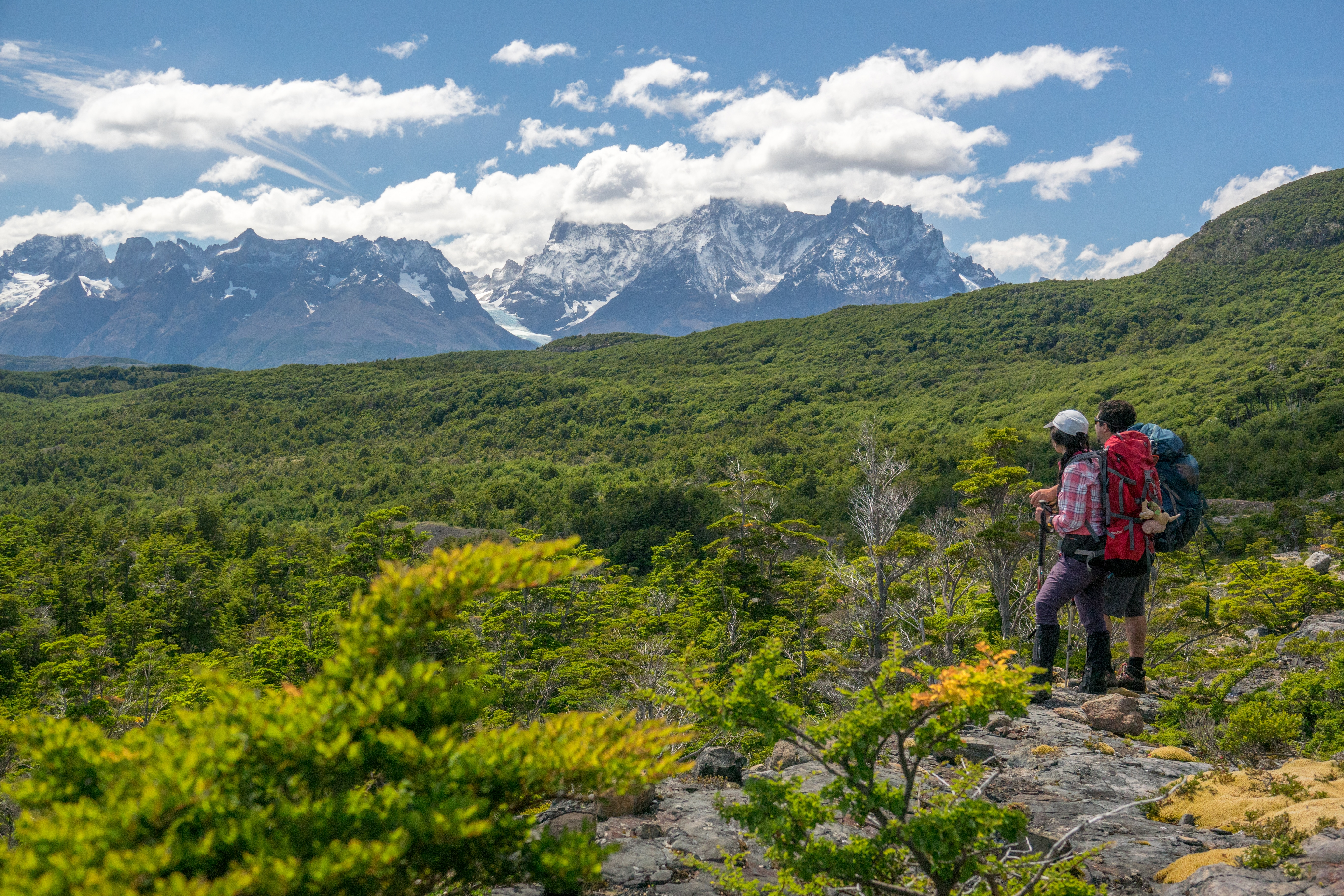 Hunting for Fossils in Torres del Paine 2