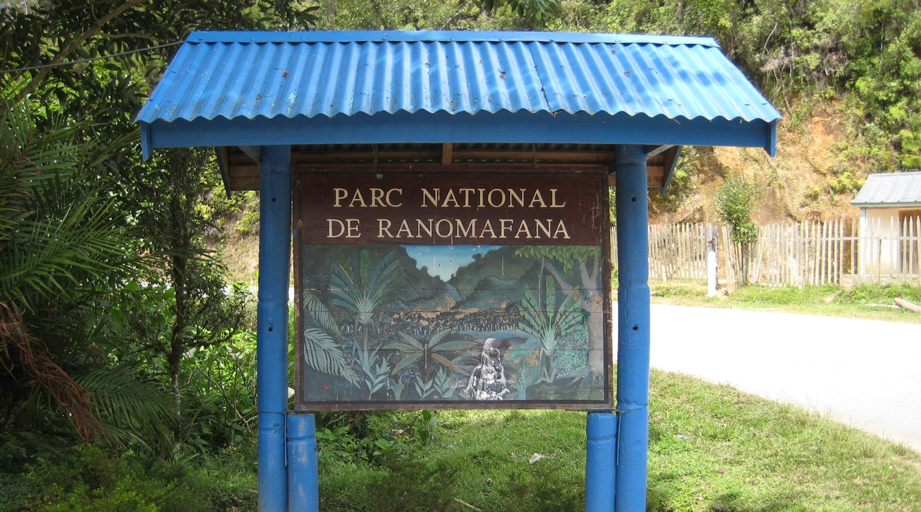 Ranomafana National Park, Madagascar – Tips & Guide