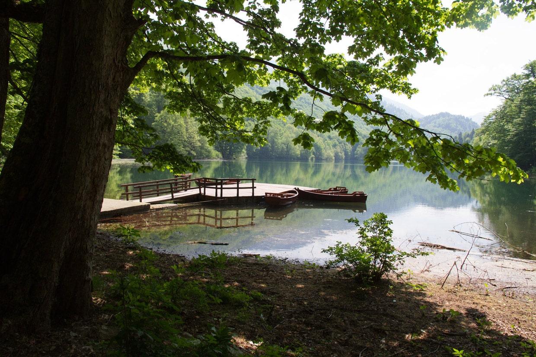Biogradska Gora National Park, Montenegro - Full Guide 3