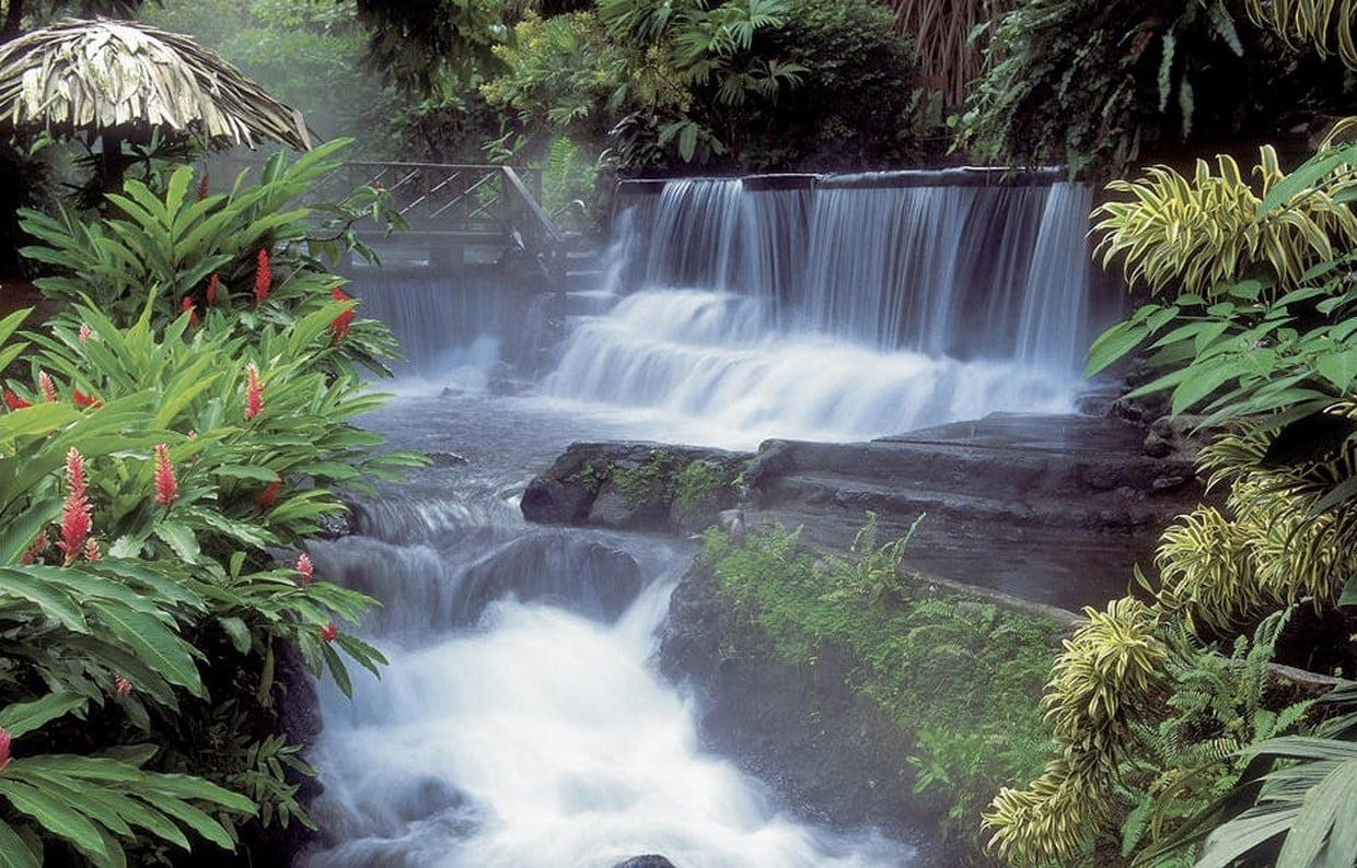 Costa Rica Natural Beauty - 10 Days Private Tour 3