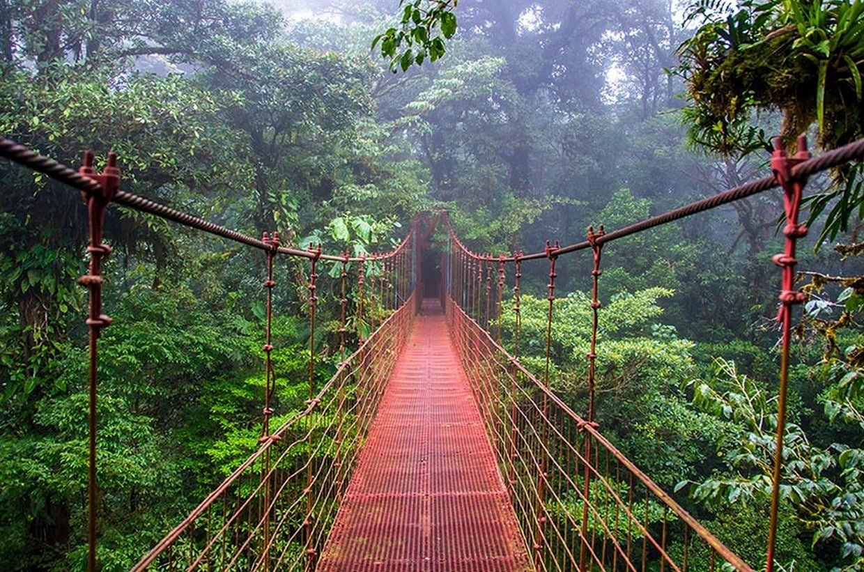 Costa Rica Natural Beauty - 10 Days Private Tour 6