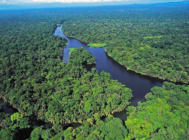 Tortuguero National Park 7