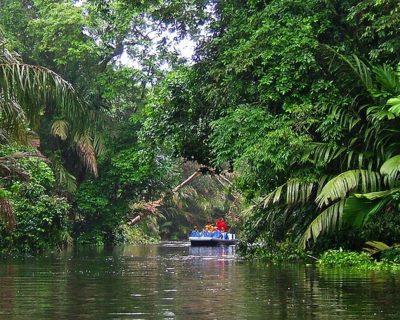 #Tortuguero National Park