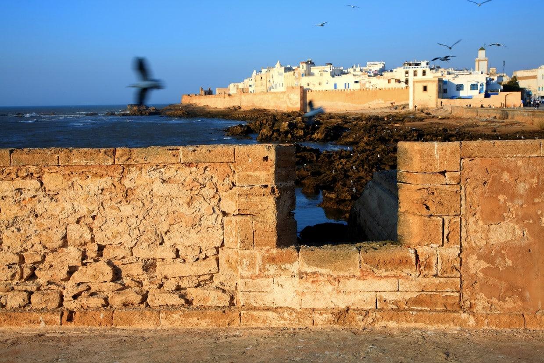 8 Day to Essaouira Via Atlantic Coast 2
