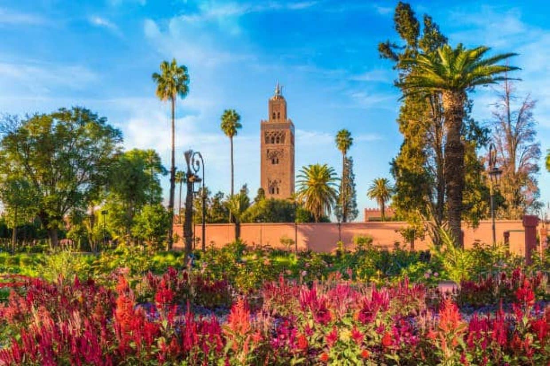 Morocco Luxury Tour 1