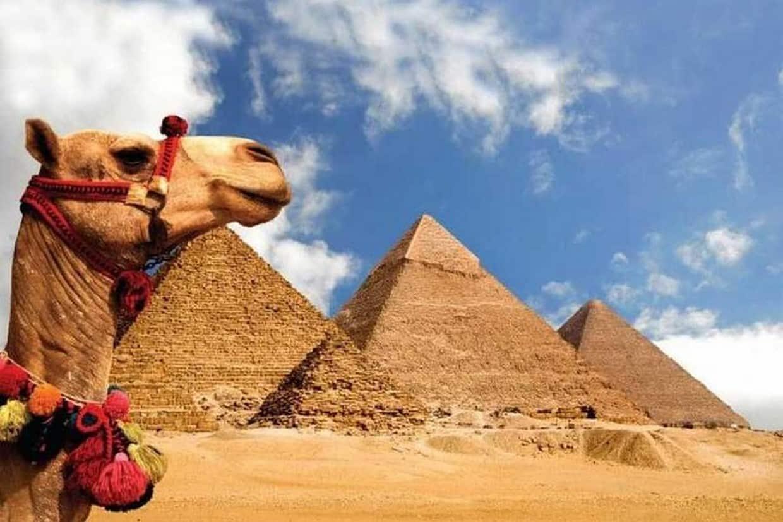 Tour Cairo, Aswan, Luxor and Nile Cruise + Camel Ride 7