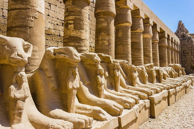 Tour Cairo, Aswan, Luxor and Nile Cruise + Camel Ride 8