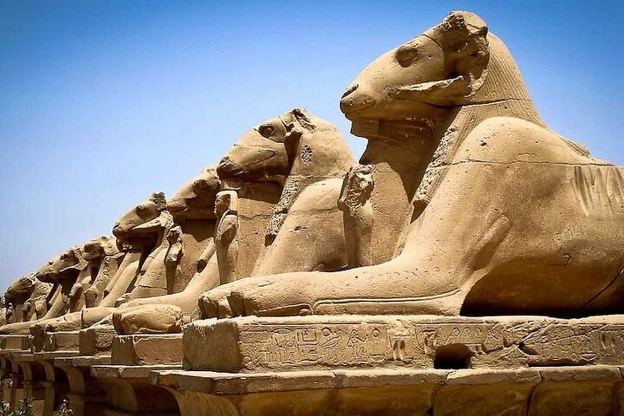 Amazing 5-Day Tour around Cairo, Luxor and Alexandria from Cairo by Flight 8