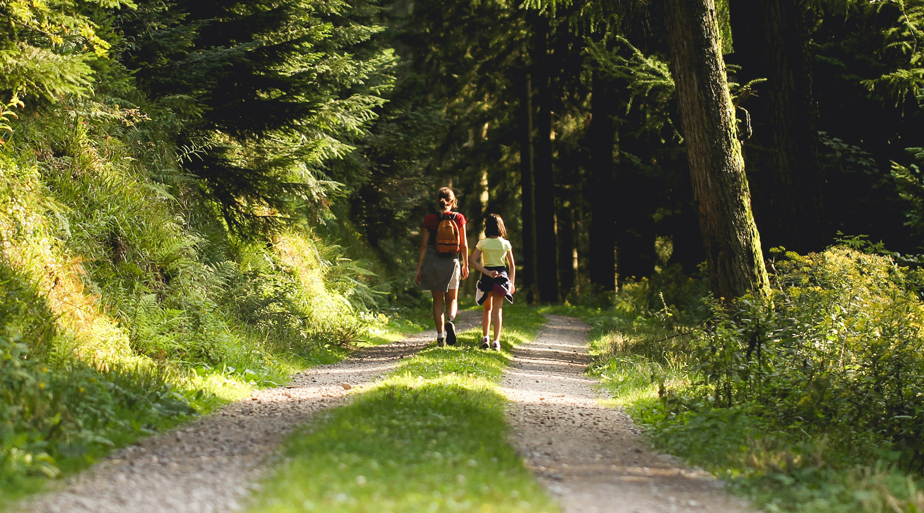 31 Things to See in The Black Forest, Germany
