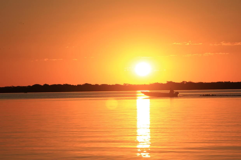 Brazil Northern Pantanal and Jaguar Spotting 7