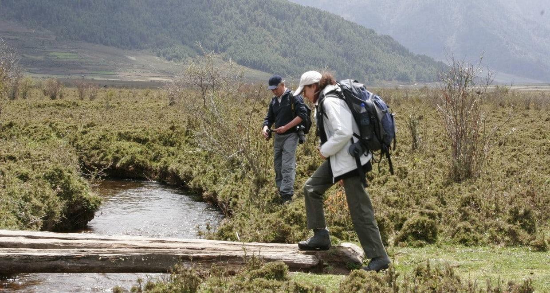 Bhutan Owl Trek With Nature & Cultural Tour 3