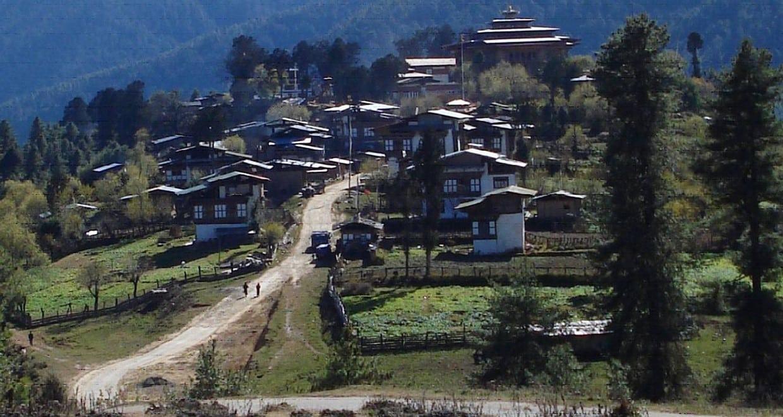 Bhutan Owl Trek With Nature & Cultural Tour 8
