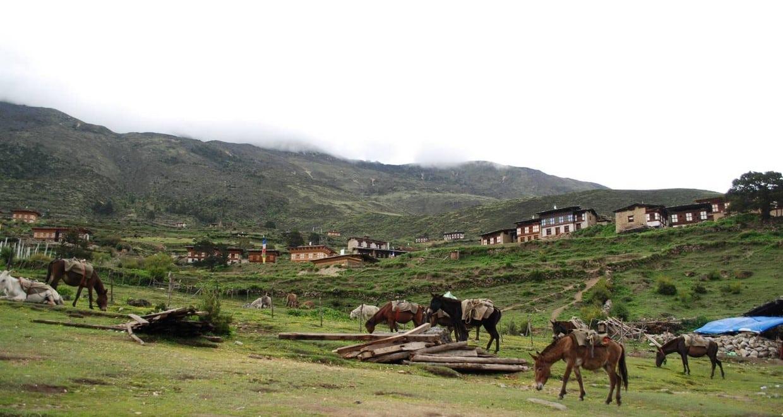 Bhutan Scenic Jomolhari Laya Gasa Trek 3