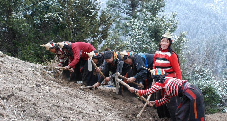 Bhutan Scenic Jomolhari Laya Gasa Trek 8