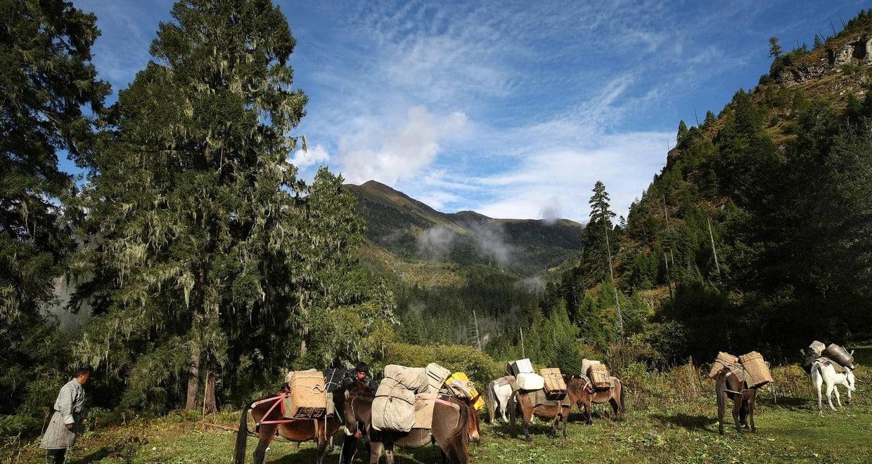 Bhutan Jomolhari Mountain Festival and Trekking Tour 6
