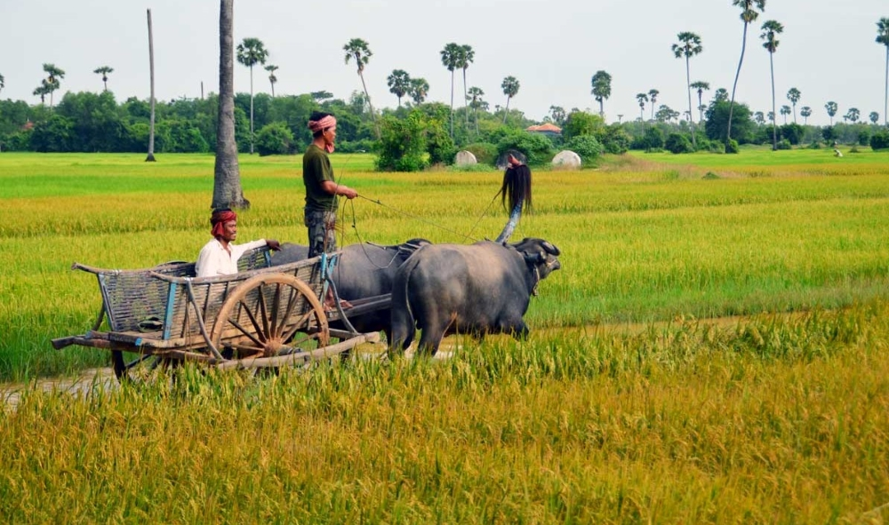 Cycling Adventures from Angkok to Saigon 1
