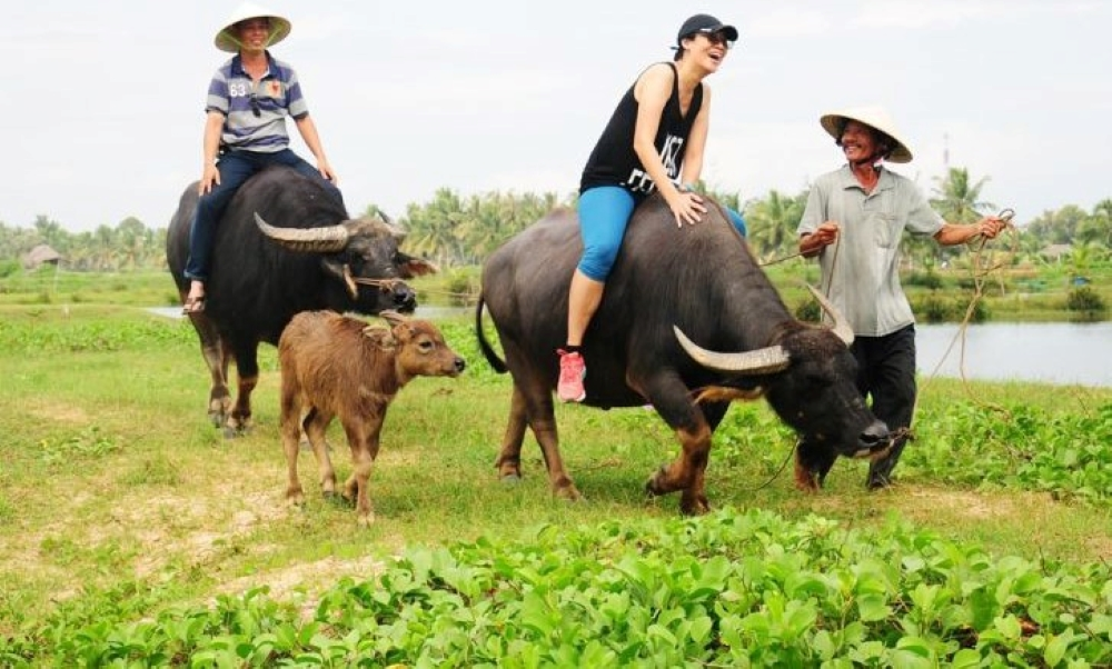 Best Vietnam Highlights for Active Families 7