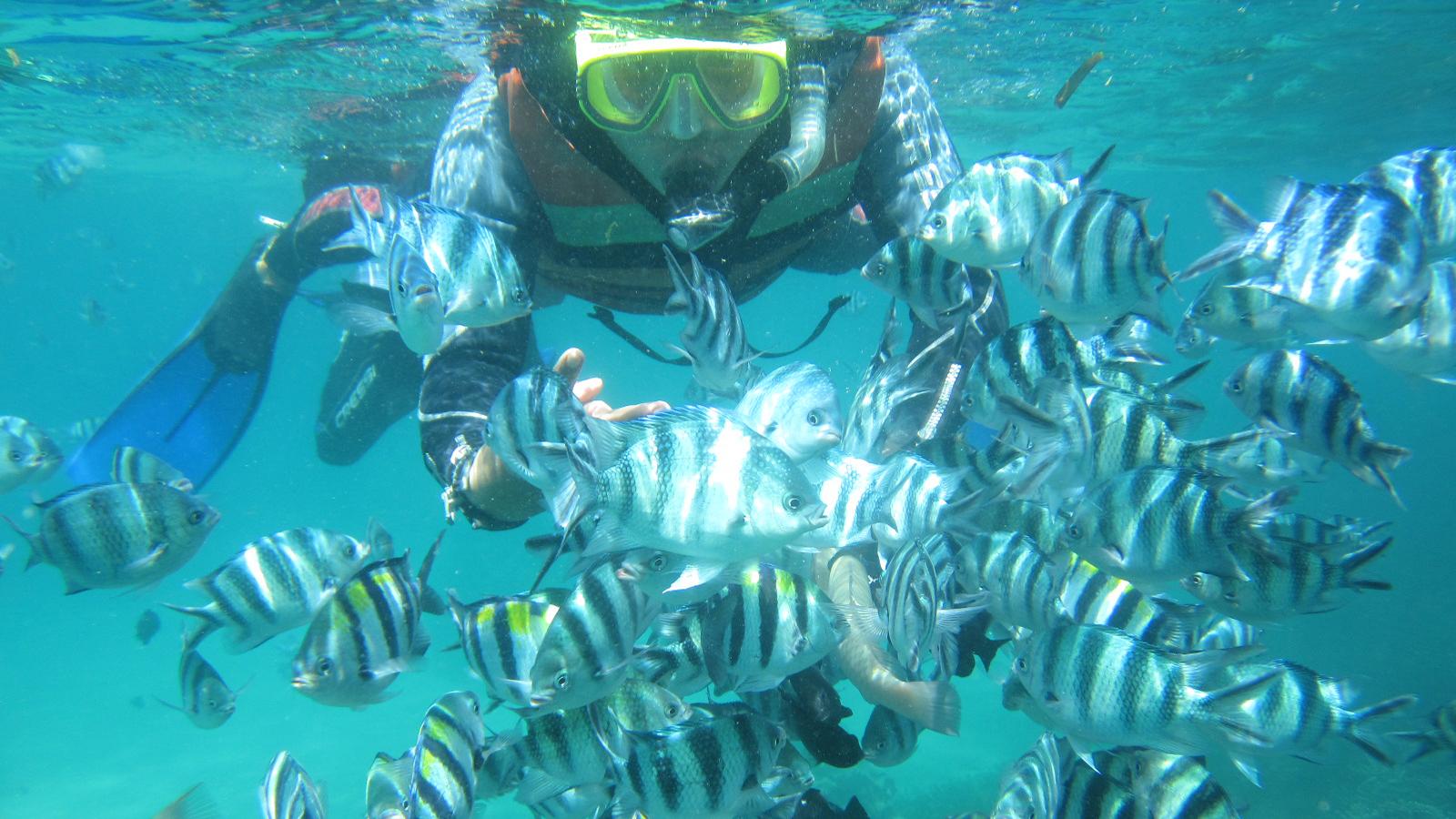 Blue Lagoon PadangBai Snorkeling with Private Hotel Transfer 5