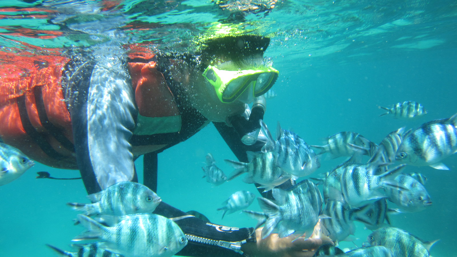 Blue Lagoon PadangBai Snorkeling with Private Hotel Transfer 7
