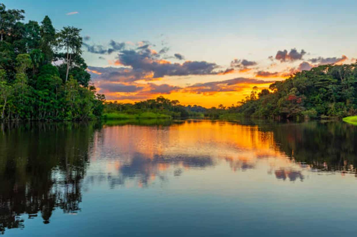 Cruise in the Heart of the Amazon Rainforest 2