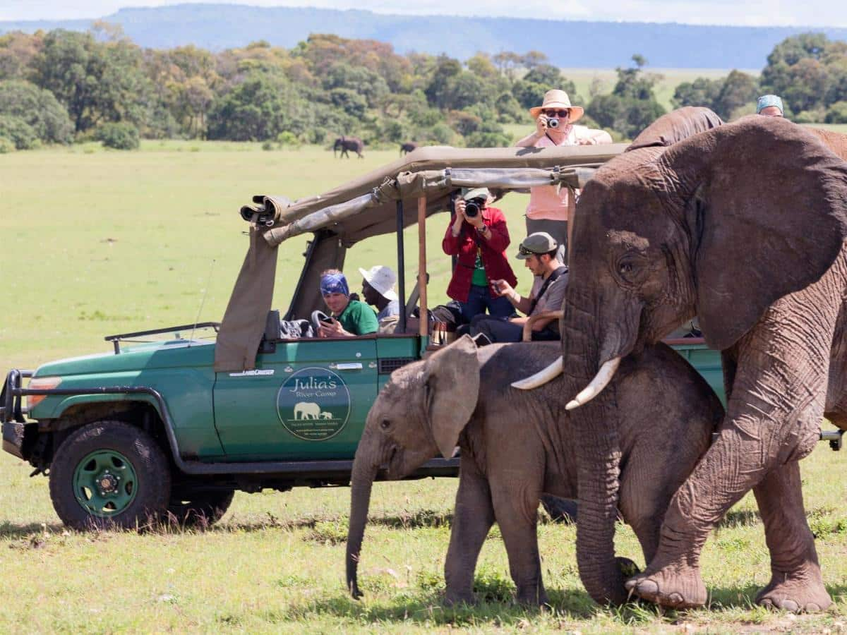 3 Days Private Midrange Safari Tour 1