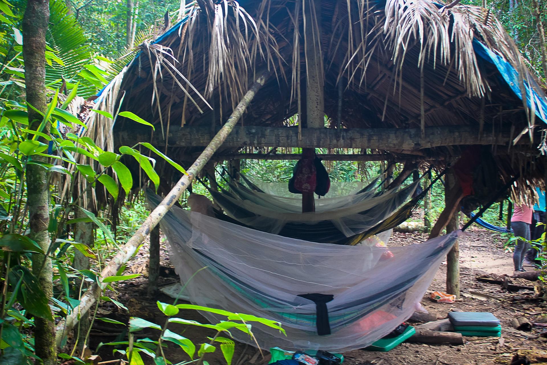 Amazon Survival Trip | 3 Days 9