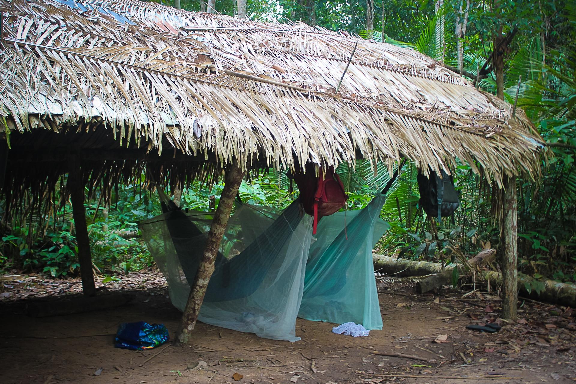 Amazon Survival Trip   4 Days 3