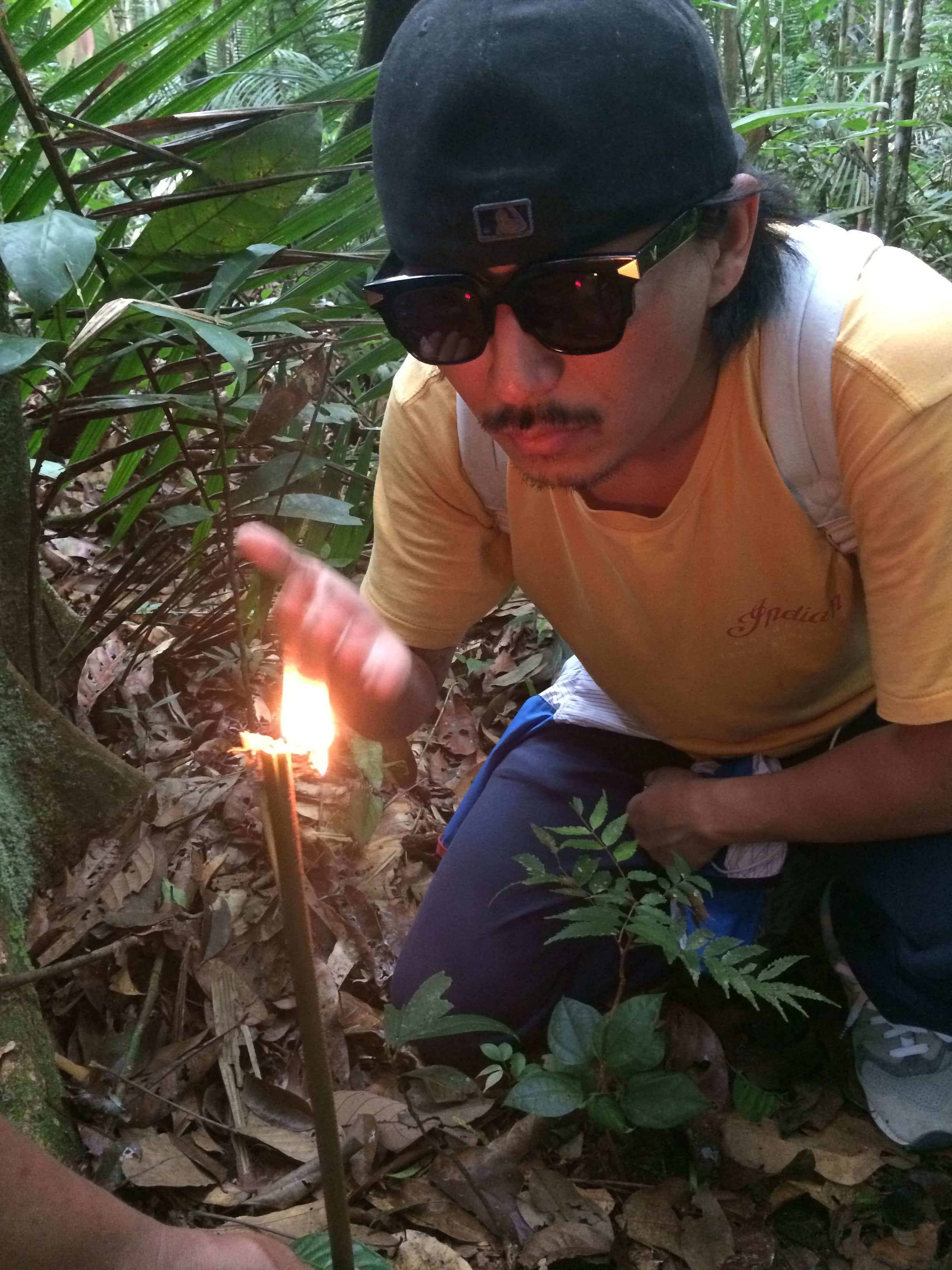 Amazon Black Caiman 7