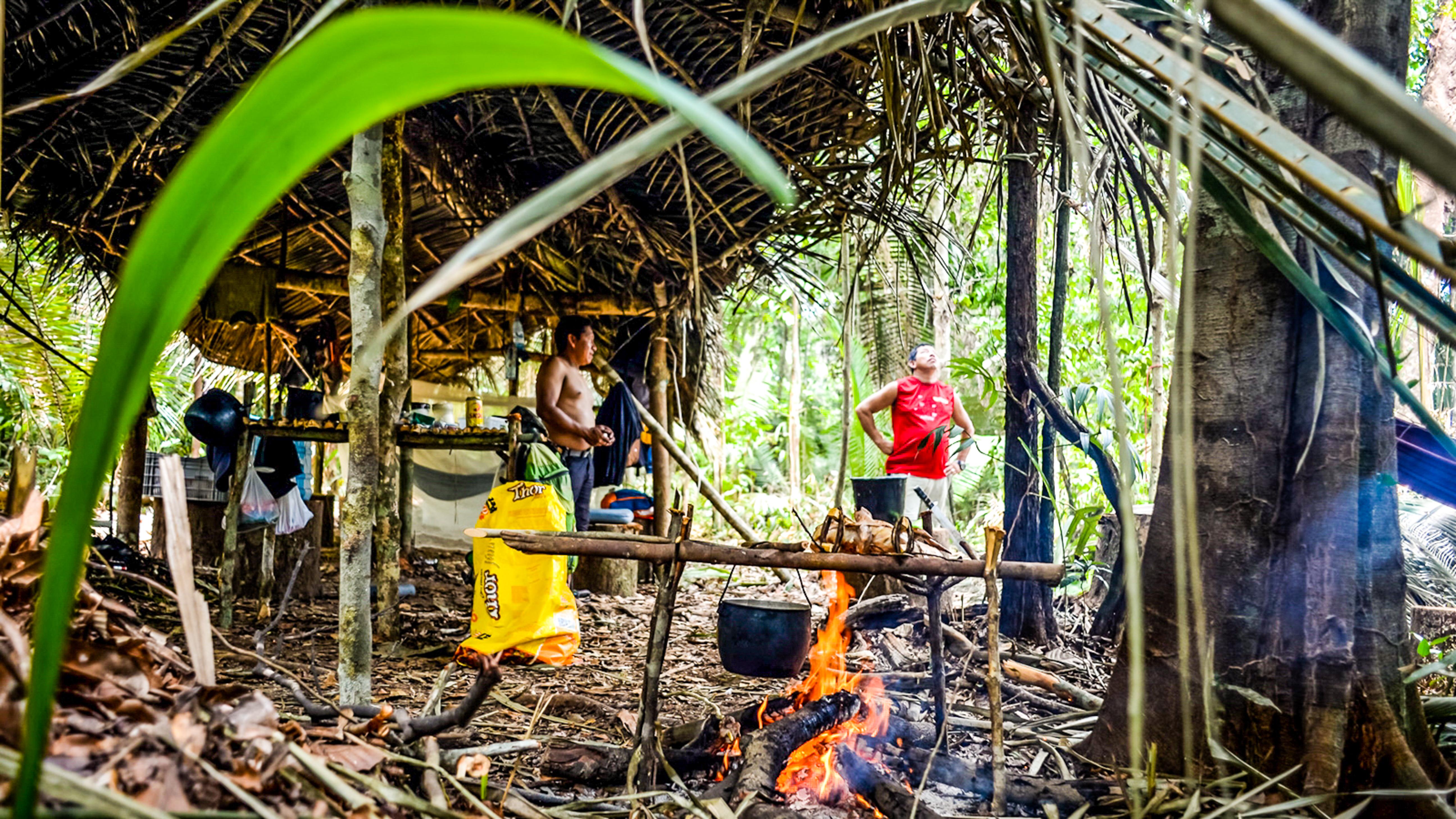 Amazon Rainforest Adventure 1
