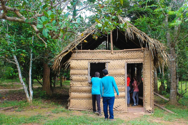Amazon Rainforest Adventure 9