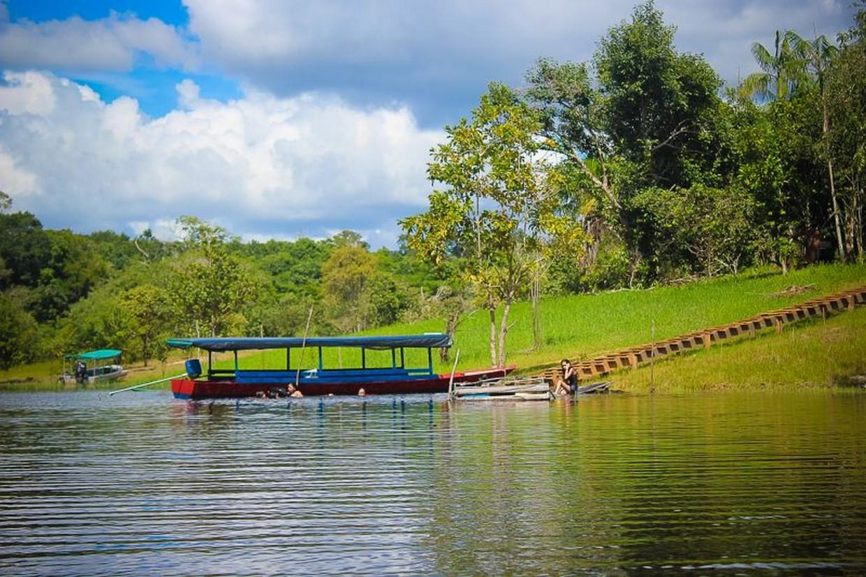 Exploring The Amazon Rainforest 5