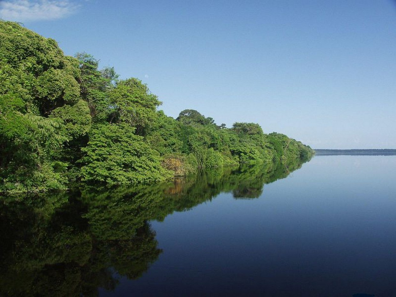 Amazon Rainforest Adventure 7