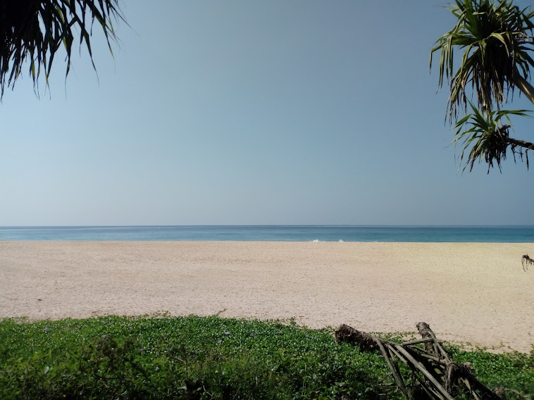 Sri Lanka Sightseeing Package   5 Days 2