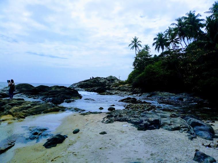 Sri Lanka Sightseeing Package   5 Days 8