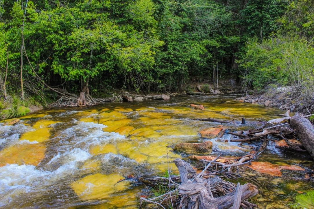 Amazon Kayaking Trip 7