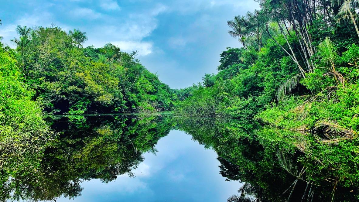 Amazon Survival Trip | 5 Days 8