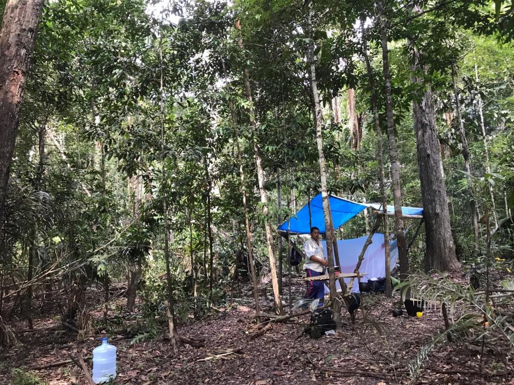 Amazon Survival Trip | 5 Days 4