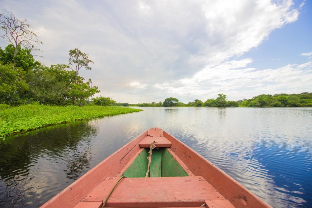 Amazon Survival Trip | 5 Days 5