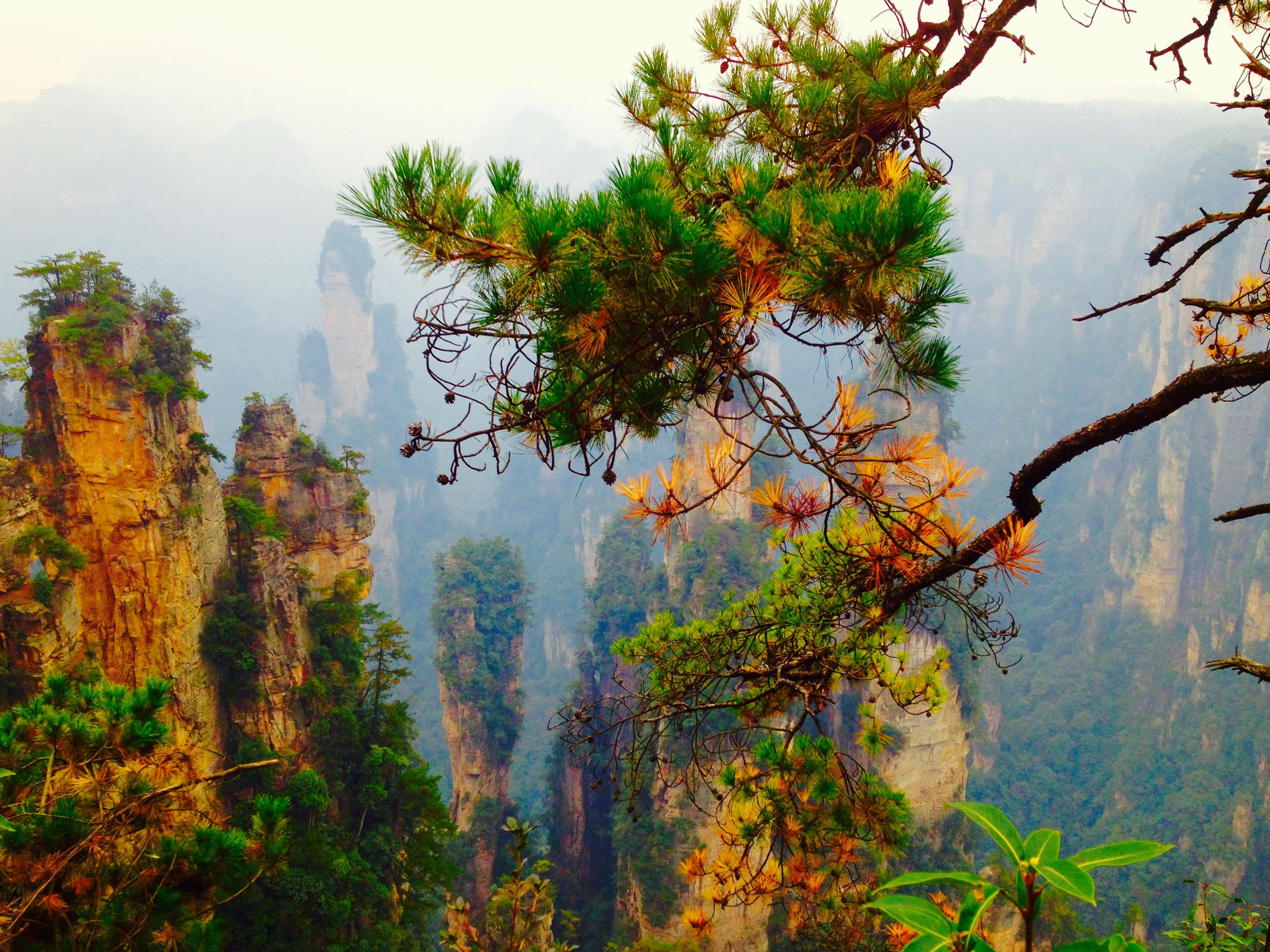 5-Day Zhangjiajie Avatar Mountain & Fenghuang Splendid Tour 2