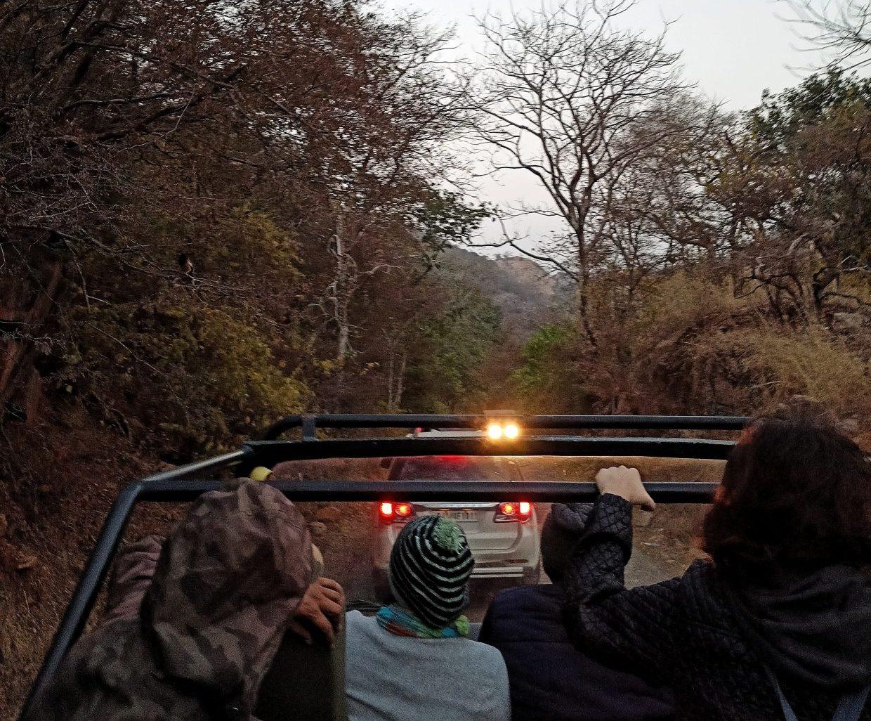 Rajasthan Wildlife Tour 10