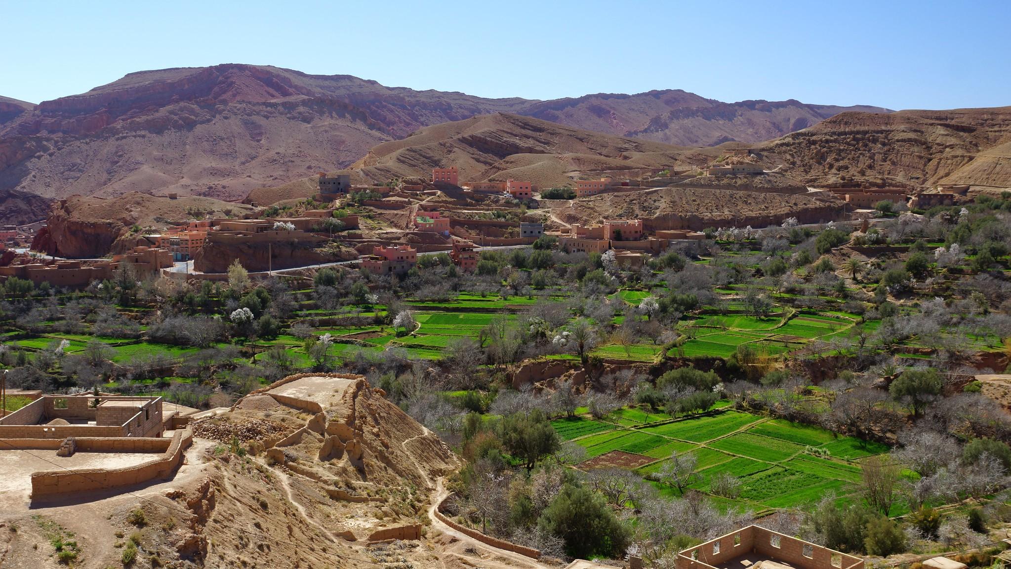 Private 3-Days Sahara Tour from Fes to Merzouga & Marrakech 5
