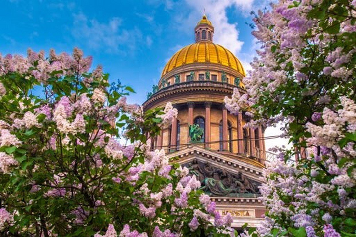 3 Day Shore Excursion of St. Petersburg Tour - Moderate 5