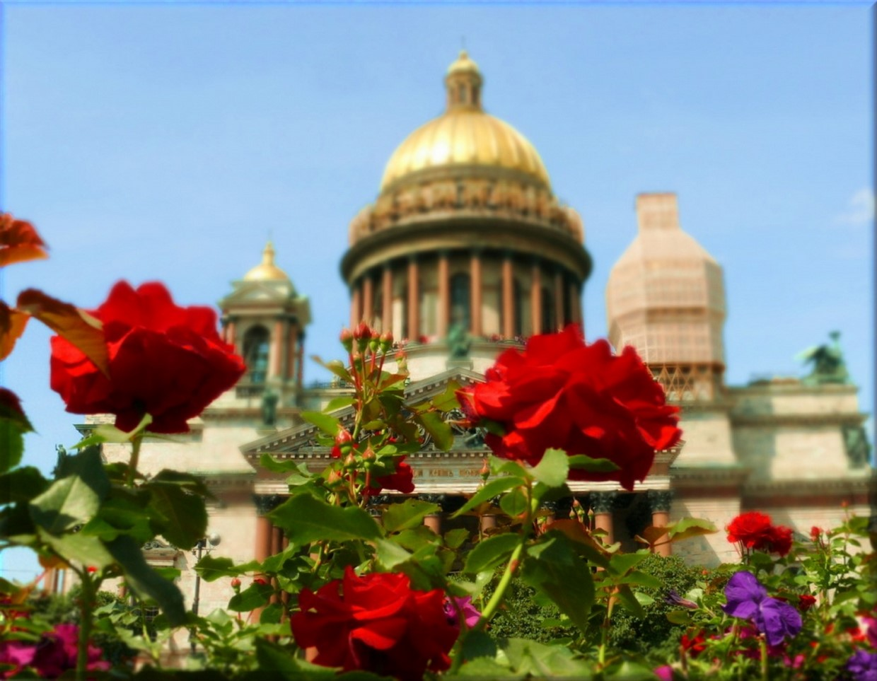 3 Day Shore Excursion of St. Petersburg Tour - Moderate 3